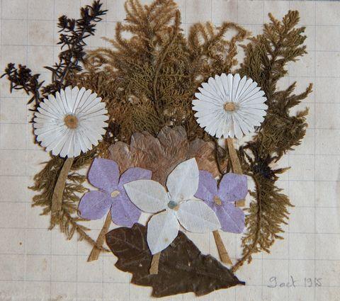 Bouquet du 9 octobre 1920